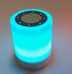 Bluetooth Mini Speaker BS01